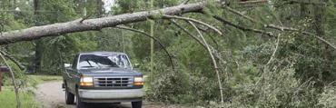 Hurricane Hermine/credit: Tallahassee Democrat