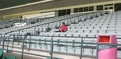 The 'crowd' at Hialeah